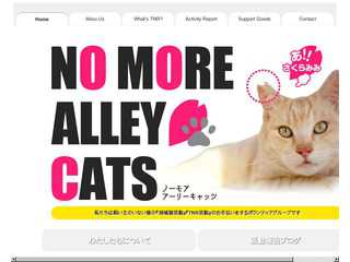 笛吹市地域猫 NO MORE ALLEY CATS