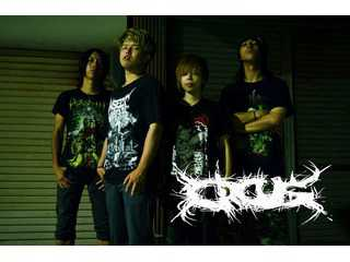 ORCUS OFFICIALWEBSITE