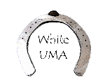 WhiteUma Developer
